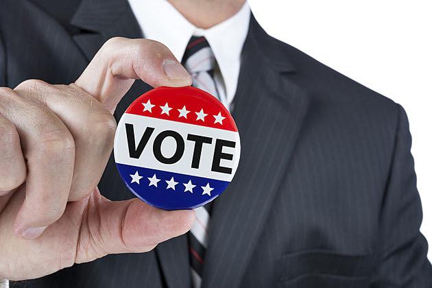 Political vote badge