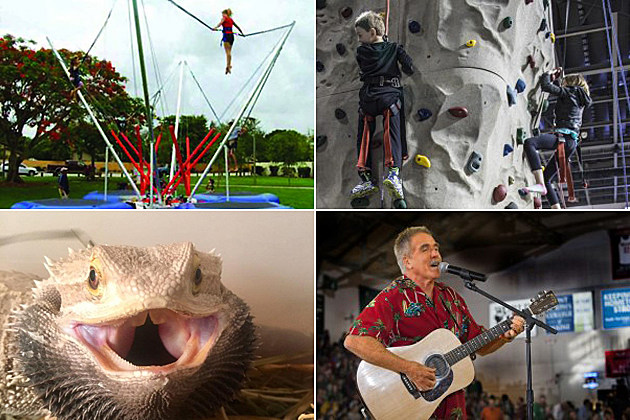 (Clockwise from top left) Adventure Climbing, Townsquare Media Bangor (2-3), Mr. Drew's Exotic Animals,